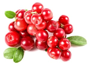 cranberries, cranberry, canneberge, superaliment, baie cranberri, cranberries fruit, cranberry infection urinaire, infection vaginal, infection urinaire, blog superaliment, fruit sec, en cas, flexitarien, fitness couple,